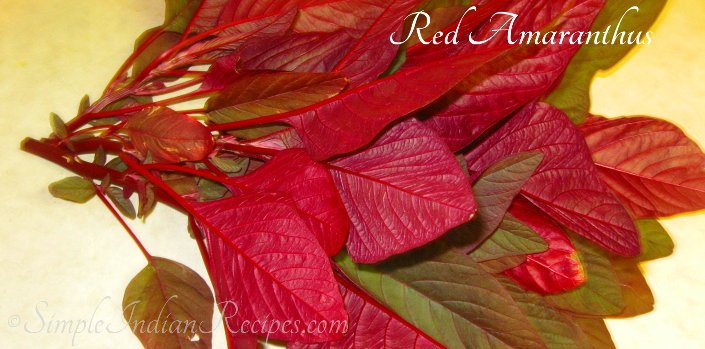Red Amaranthus