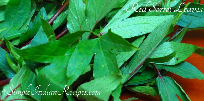 Red Sorrel Leaves