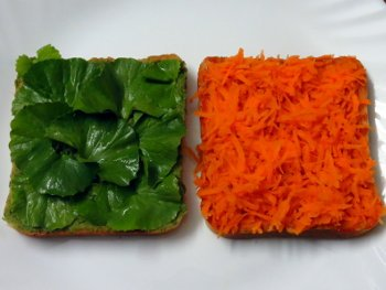 Tricolor Vegetable Sandwich Steps
