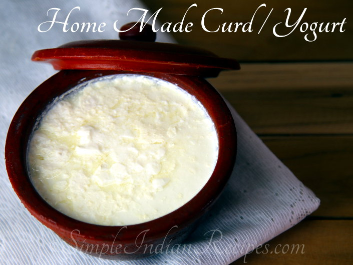 Home Made Curd or Yogurt